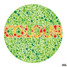 Life In Color: A Cure for Color Blindness
